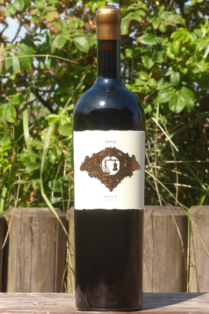 2014 Dakota Shy Social Currency Cabernet Sauvignon 1,5l