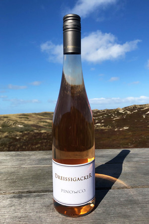 "2018 Dreissigacker Pino & Co Rosé ""only Sansibar"" 0,75l"